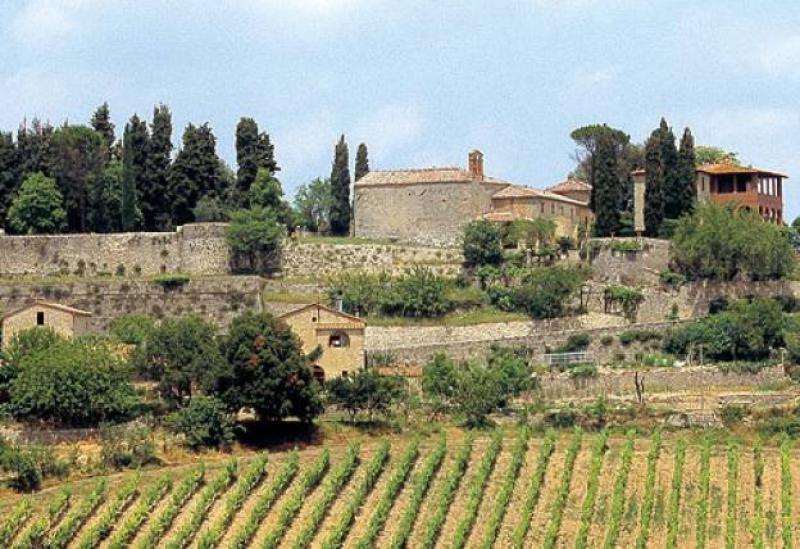 Agriturismo Toskana Agriturismo Siena, mit Wein-und Olivenölproduktion