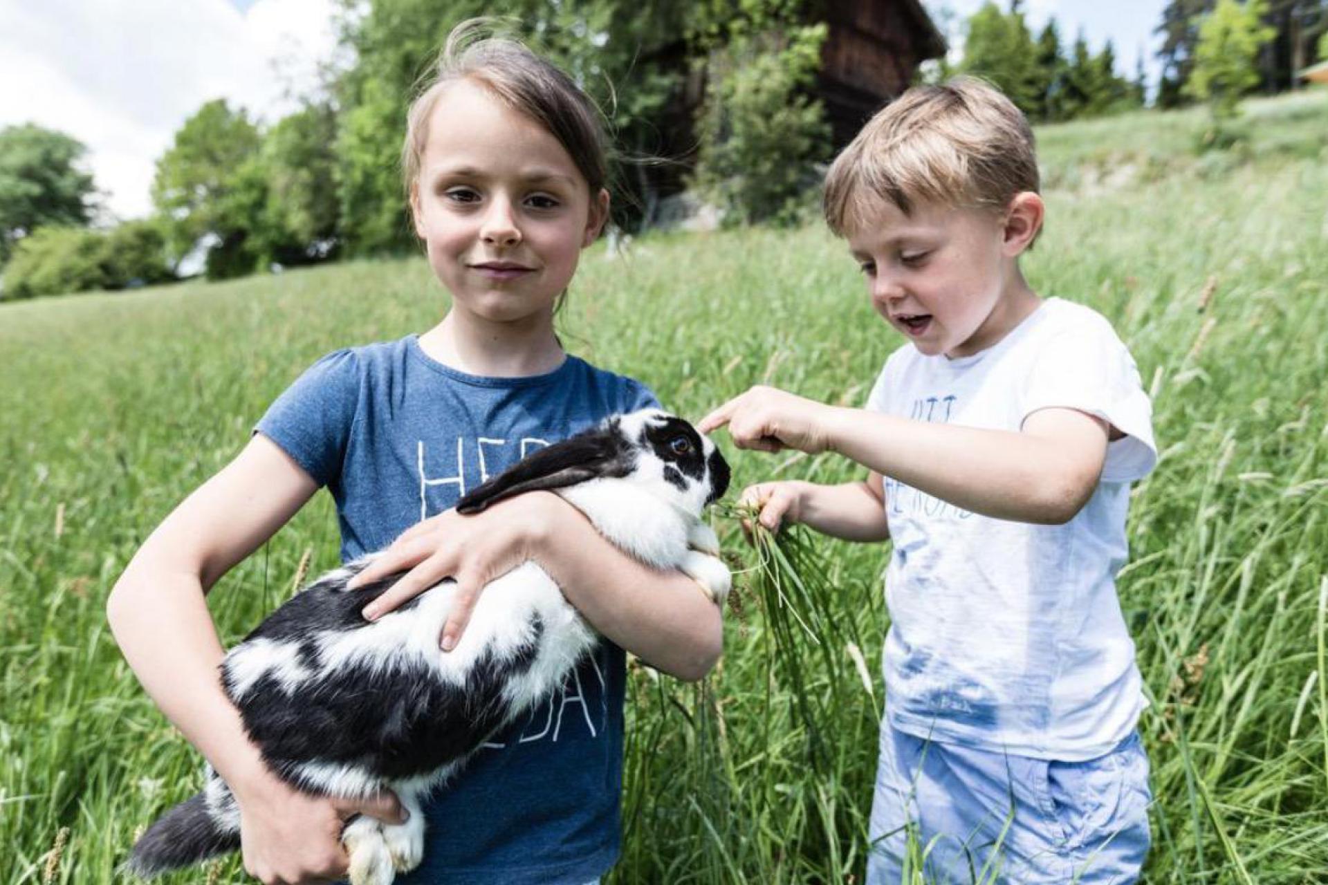 Agriturismo Dolomiten Aktiver Agriturismo mit Bauernhoftiere in Trentino