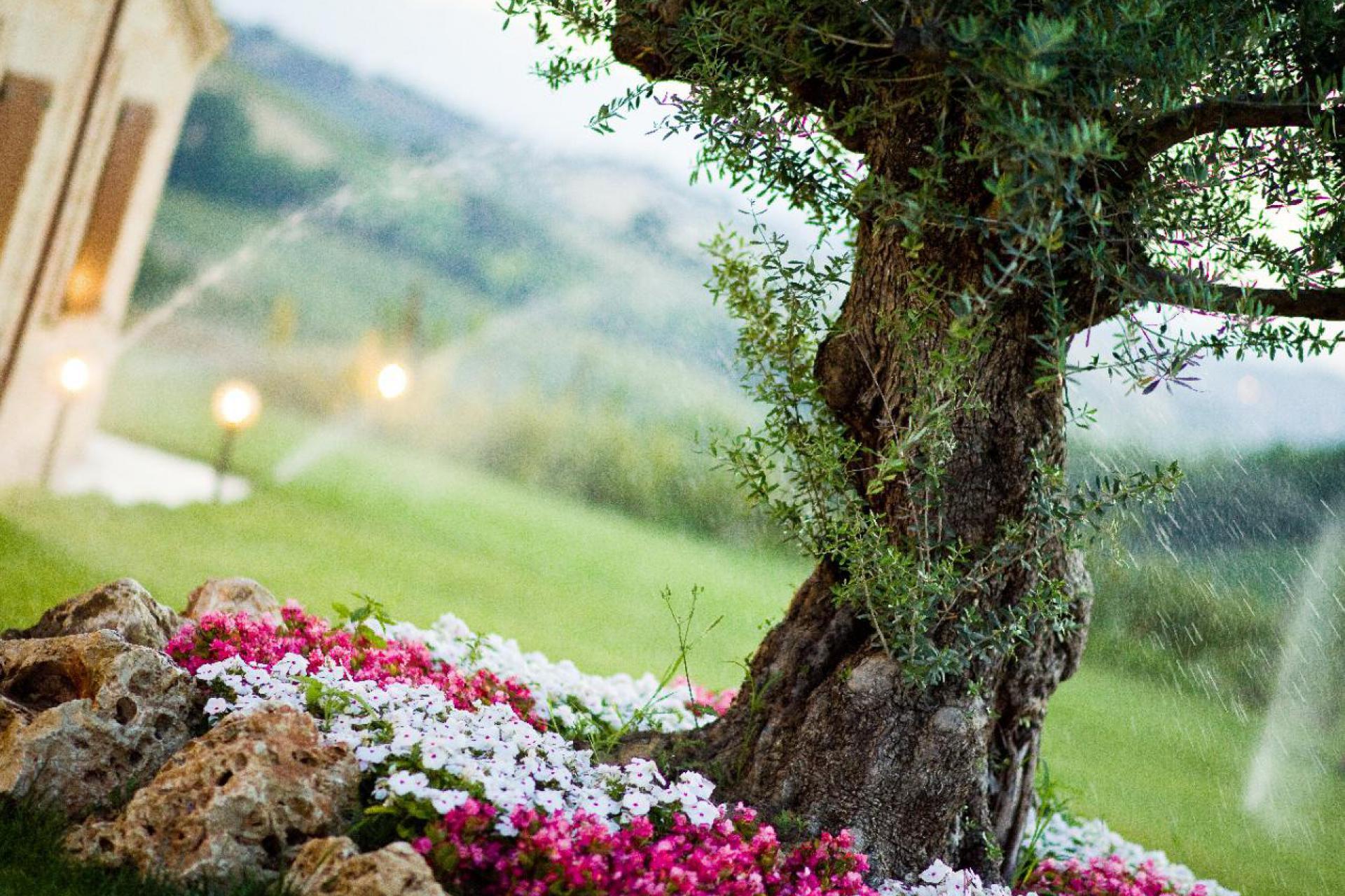 Agriturismo Marken Agriturismo Marken, familienfreundlich und ruhig gelegen