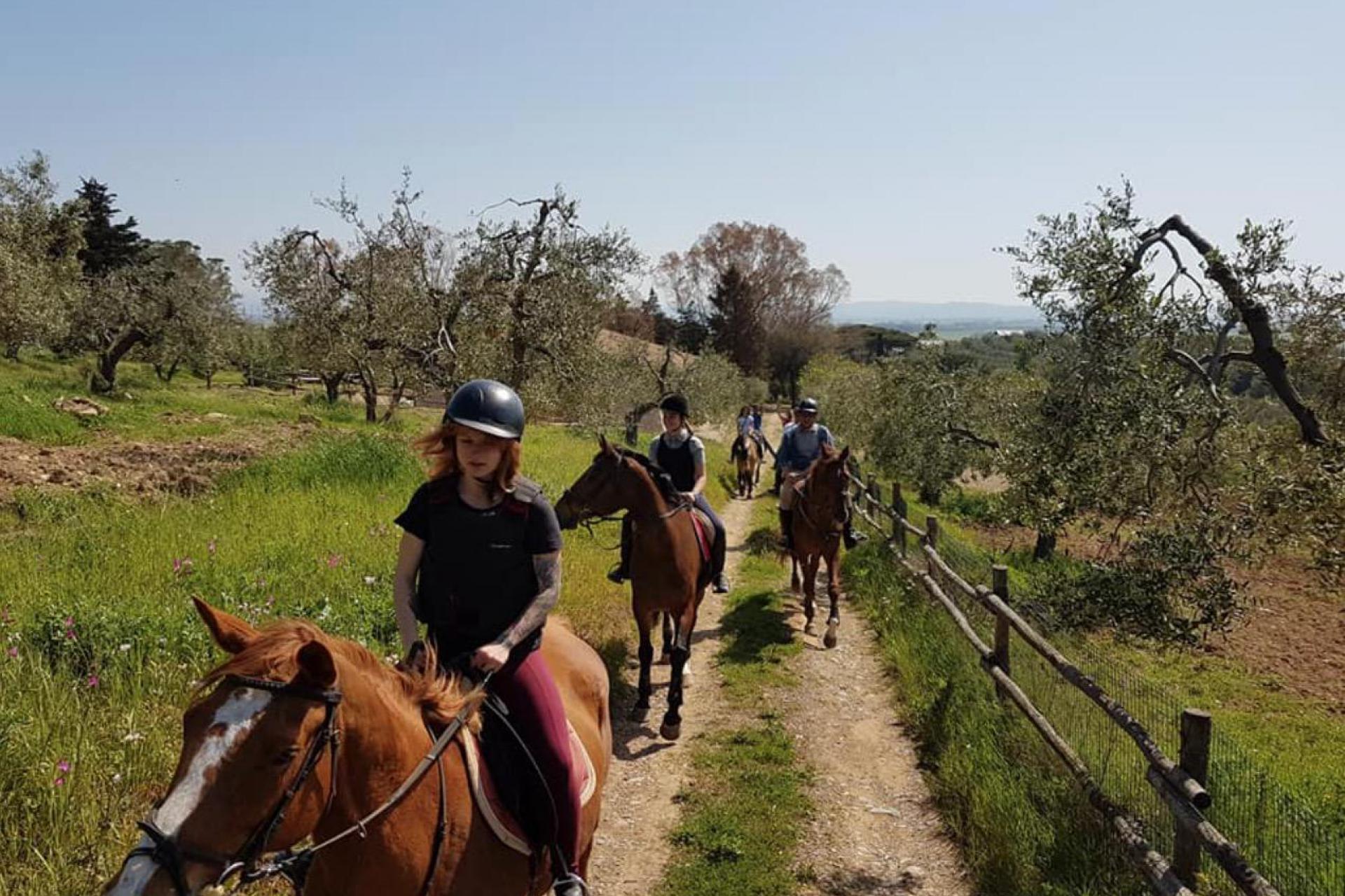 Agriturismo Toskana Urlaub an der toskanischen Küste   myitalyselection.de